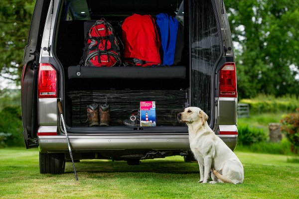 Campervan Boot and Dog Friendly Van