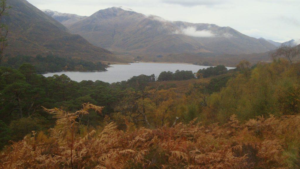 Walk Scotland Glen Affric